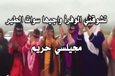 تشوقني الوفرة واجيها سوات الطير - مجيلسي حريم mp3