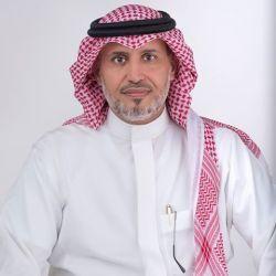 شيلة لا والله الا بين الكبر فيني mp3 - اداء الداوي